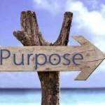 Purpose_ayurveda